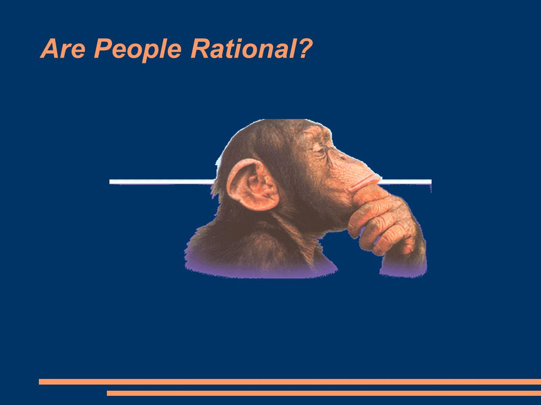 Are People Rational?
