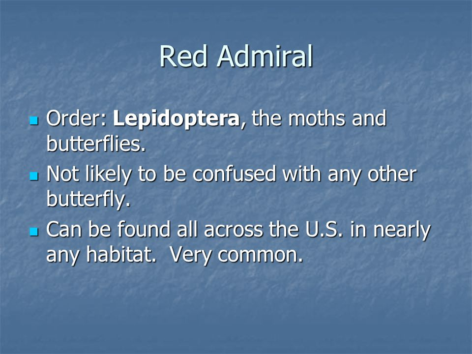 Order: Lepidoptera, the moths and butterflies. Order: Lepidoptera, the moths and butterflies.