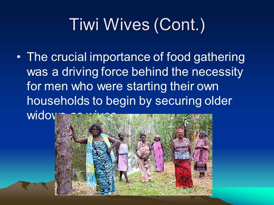 Tiwi Wives (Cont.) The crucial importance of food gathering was a driving force behind the necessity for men who were starting their own households to begin by securing older widows as wives.