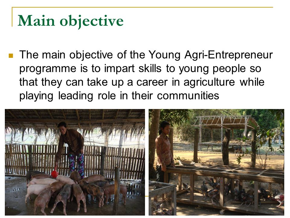 Main objective The main objective of the Young Agri-Entrepreneur programme is to impart skills to young people so that they can take up a career in agriculture while playing leading role in their communities