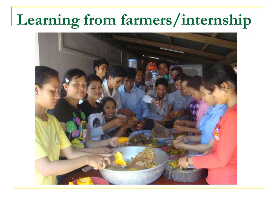 Learning from farmers/internship