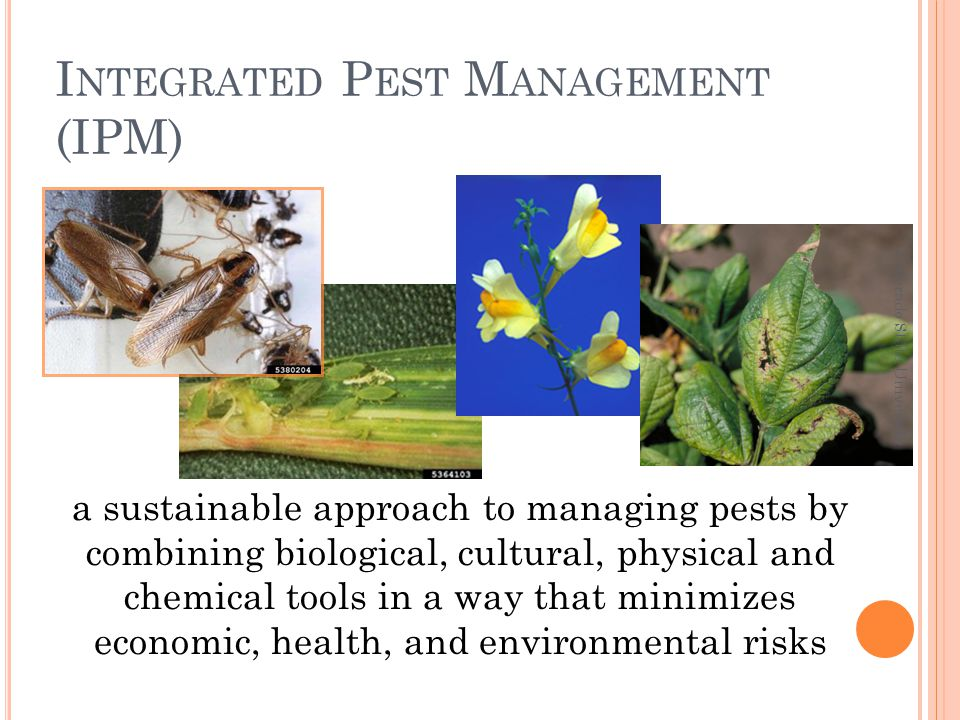 to improve health and safety by reducing exposure to pesticides, pest-related allergens and other environmental agents Colorado State University