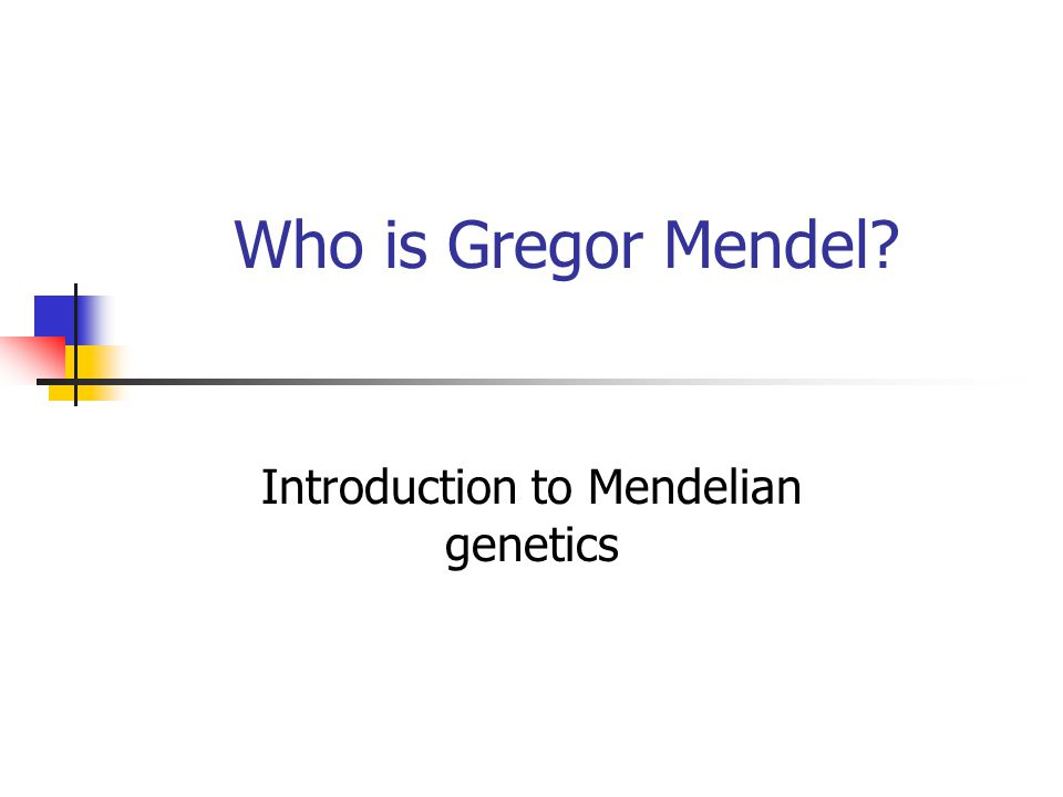 The Genetics of Mendel's Experiments Some Vocab Dominant trait-masks the recessive Shown with capital letters Recessive trait-only shows if dominant is not present Shown with lower case letters Phenotype-physical appearance For example purple, wrinkled, tall, etc