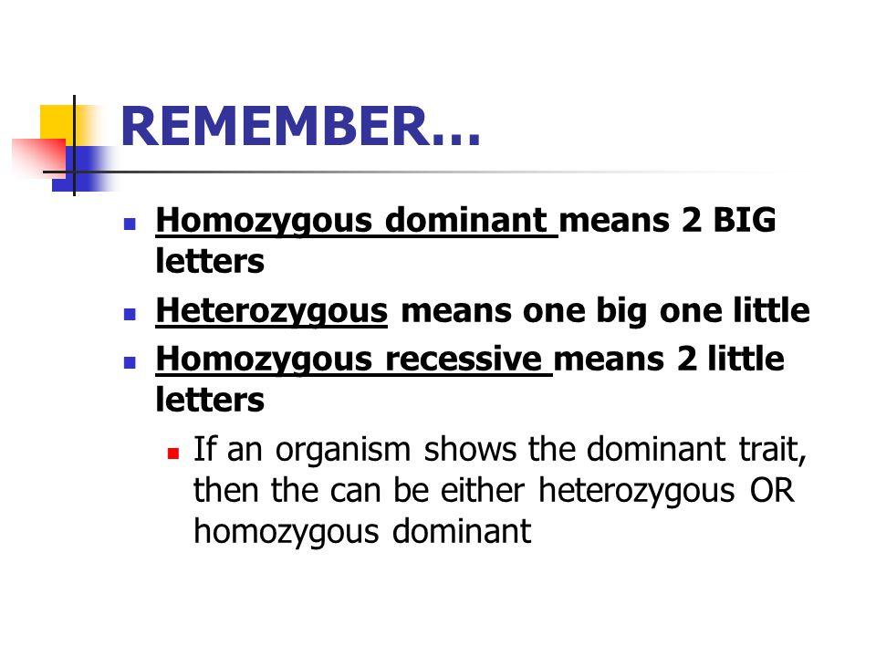 REMEMBER… Homozygous dominant means 2 BIG letters Heterozygous means one big one little Homozygous recessive means 2 little letters If an organism sho