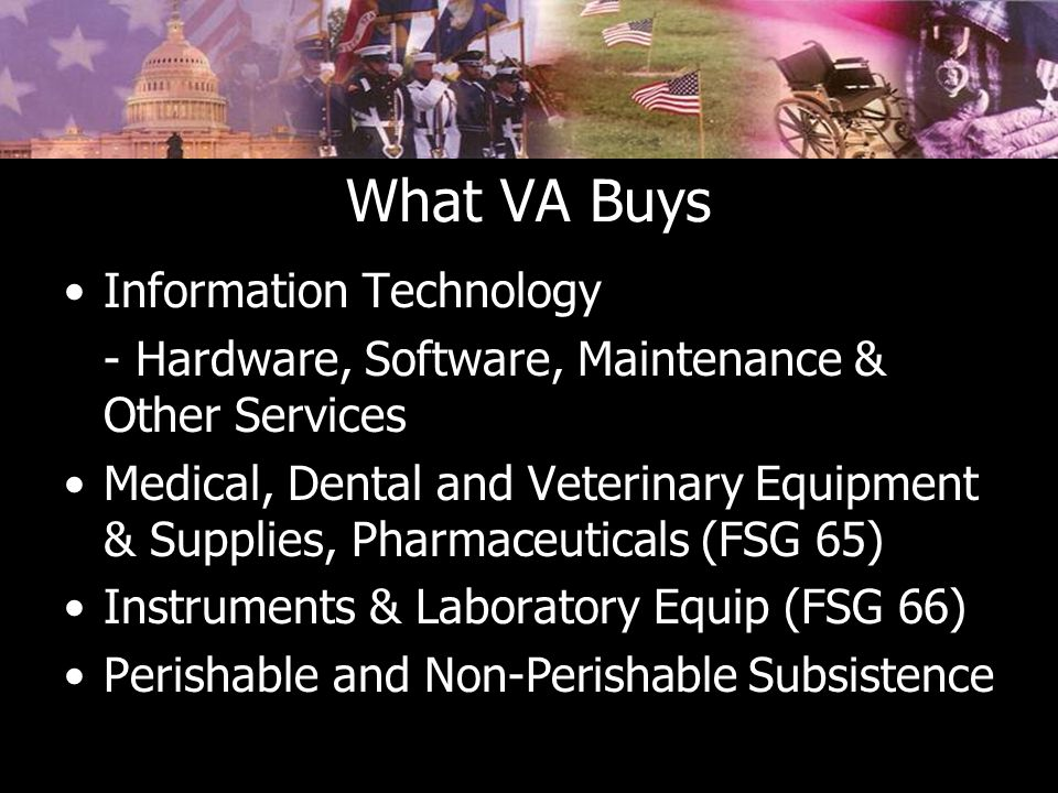What VA Buys Information Technology - Hardware, Software, Maintenance & Other Services Medical, Dental and Veterinary Equipment & Supplies, Pharmaceuticals (FSG 65) Instruments & Laboratory Equip (FSG 66) Perishable and Non-Perishable Subsistence