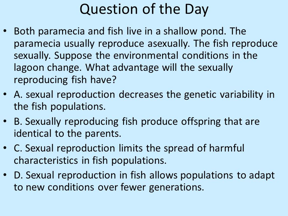Question of the Day Both paramecia and fish live in a shallow pond.