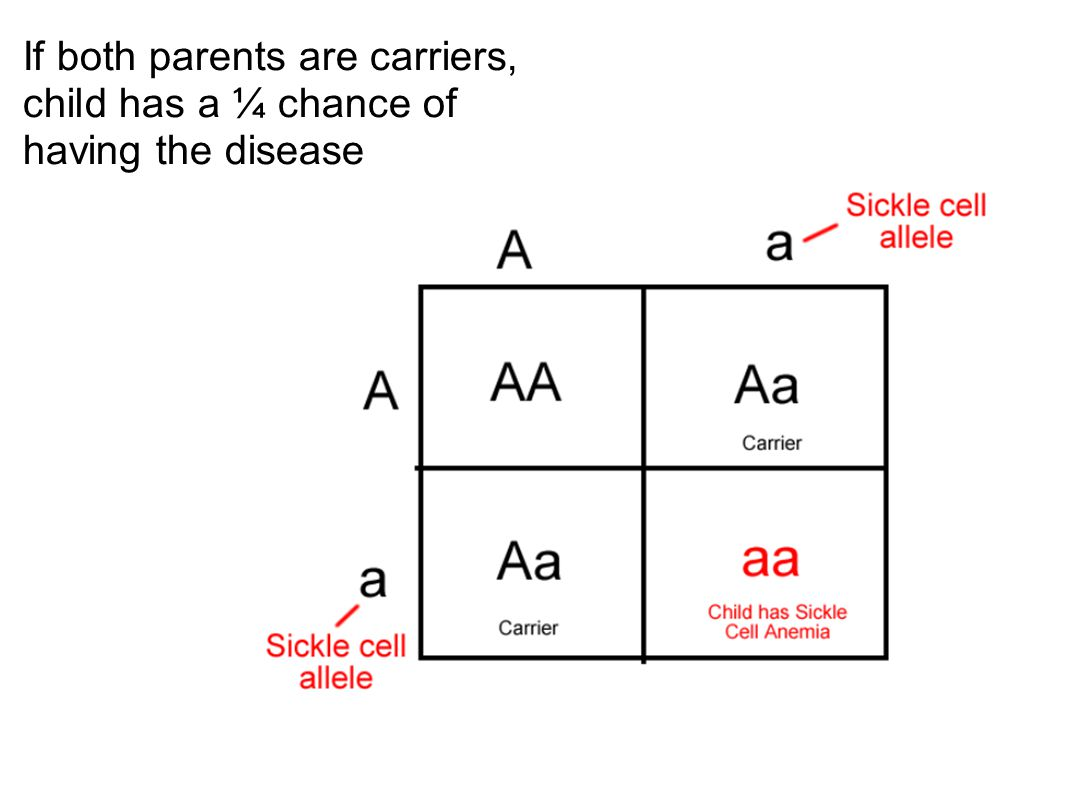 If both parents are carriers, child has a ¼ chance of having the disease