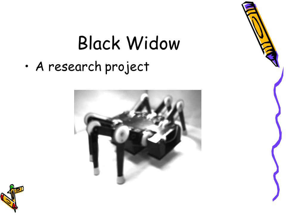 Black Widow A research project