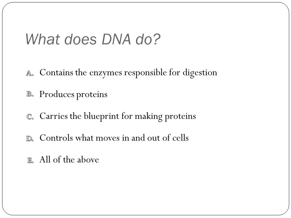 What does DNA do.