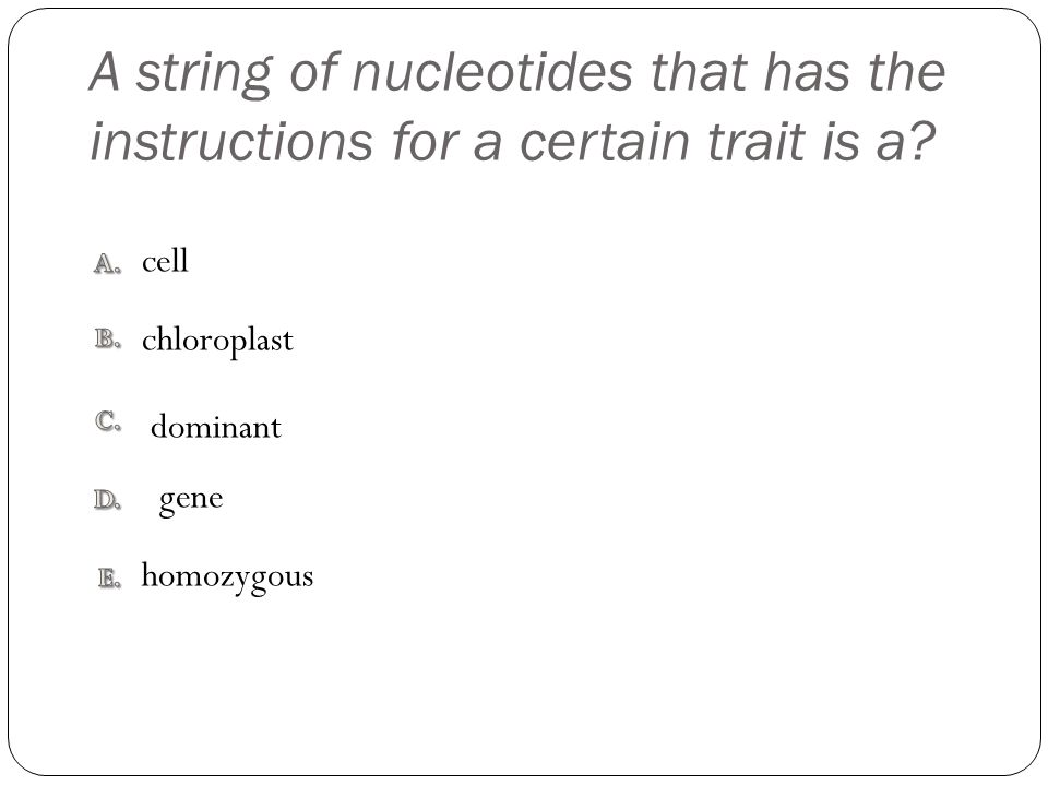 A string of nucleotides that has the instructions for a certain trait is a? homozygous cell dominant chloroplast gene