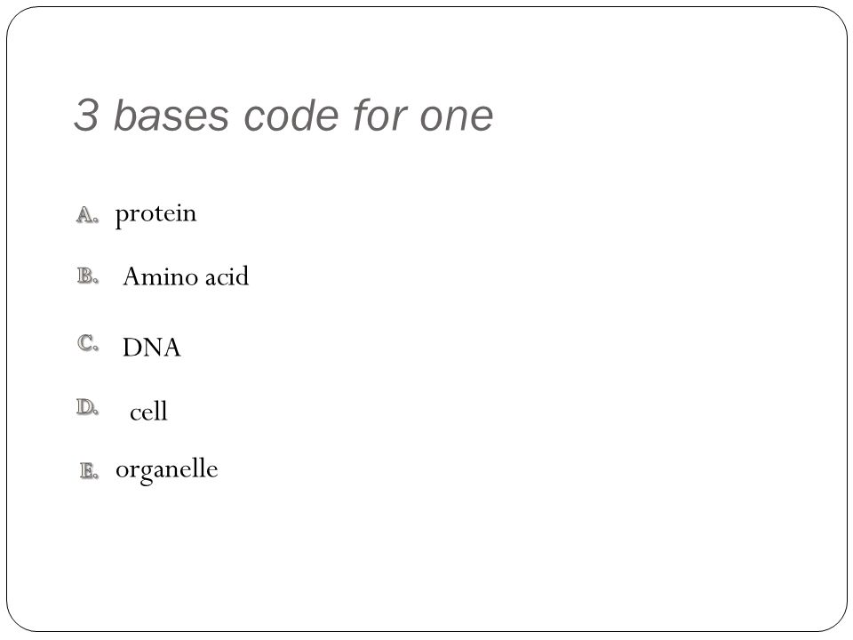 3 bases code for one organelle protein DNA cell Amino acid