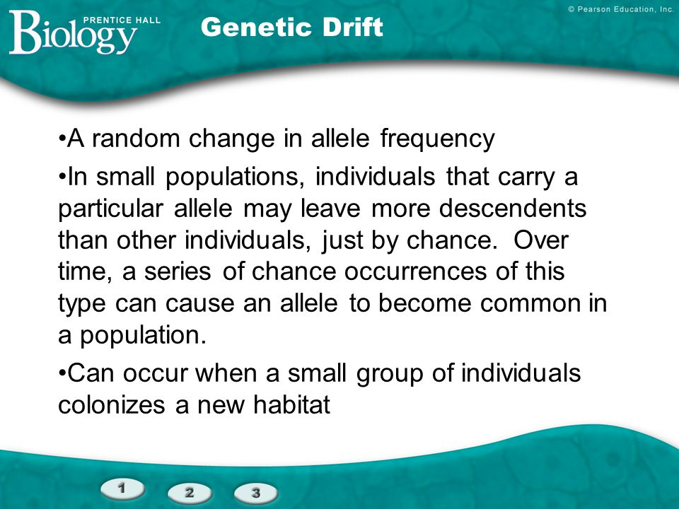 Genetic Drift A random change in allele frequency In small populations, individuals that carry a particular allele may leave more descendents than oth
