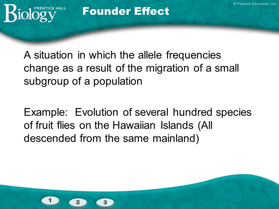 Sample of Original Population Founding Population A Founding Population B Descendants Genetic Drift Section 16-2