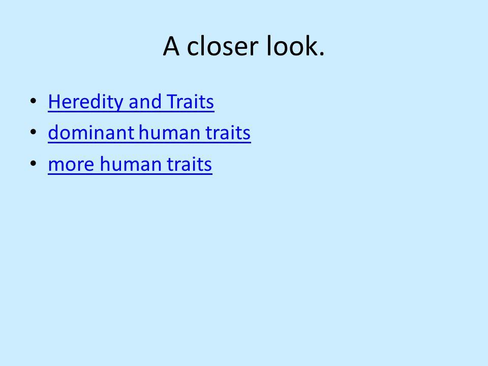 A closer look. Heredity and Traits dominant human traits more human traits
