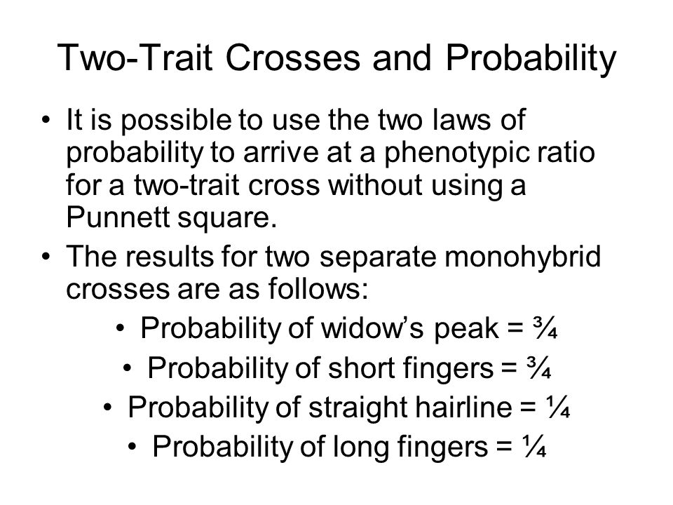 The probabilities for the dihybrid cross: Probability of widow's peak and short fingers = ¾ x ¾ = 9/16 Probability of widow's peak and long fingers = ¾ x ¼ = 3/16 Probability of straight hairline and short fingers = ¼ x ¾ = 3/16 Probability of straight hairline and long fingers = ¼ x ¼ = 1/16