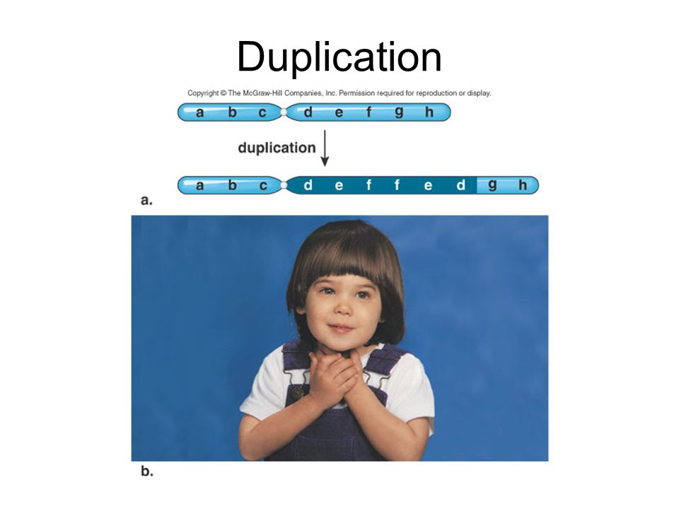 Translocation Translocation is exchange of chromosomal segments between two, nonhomologous chromosomes.