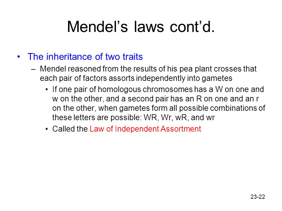 23-22 Mendel's laws cont'd. The inheritance of two traits –Mendel reasoned from the results of his pea plant crosses that each pair of factors assorts