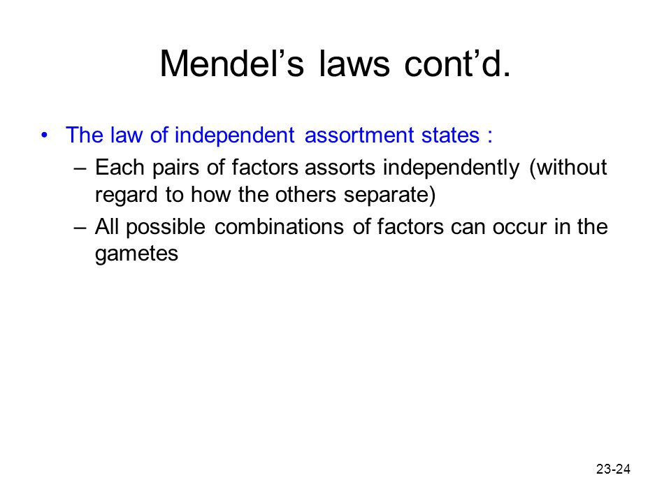 23-24 Mendel's laws cont'd. The law of independent assortment states : –Each pairs of factors assorts independently (without regard to how the others