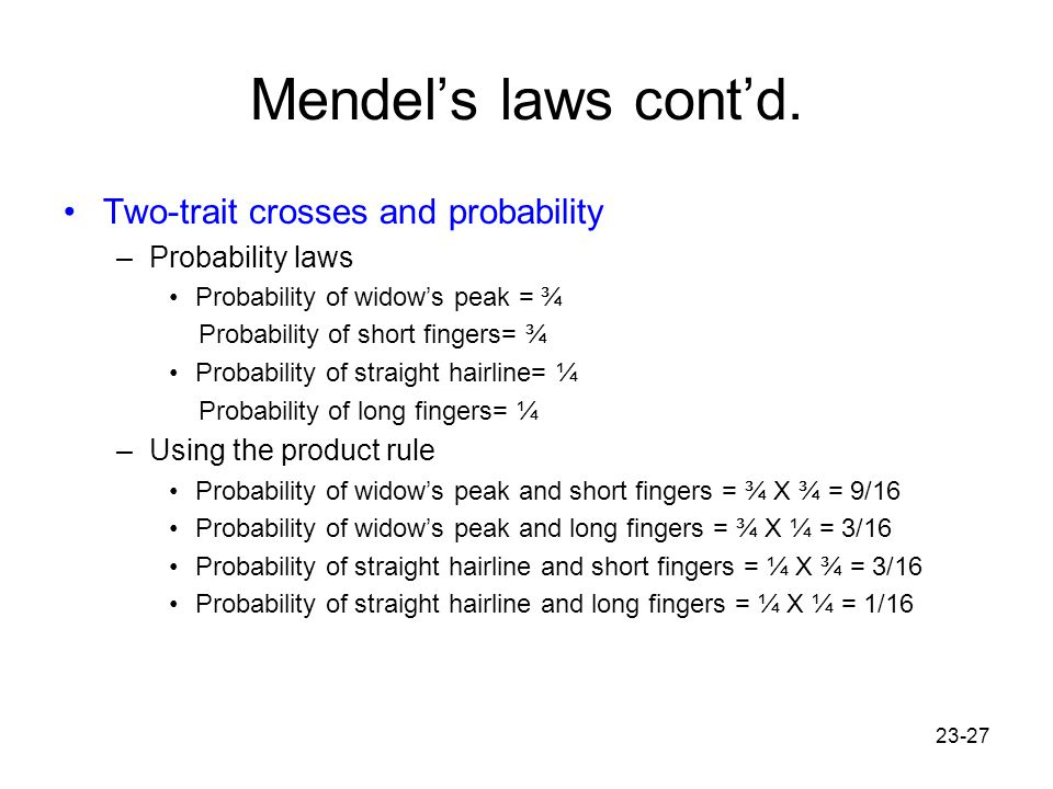 23-27 Mendel's laws cont'd. Two-trait crosses and probability –Probability laws Probability of widow's peak = ¾ Probability of short fingers= ¾ Probab