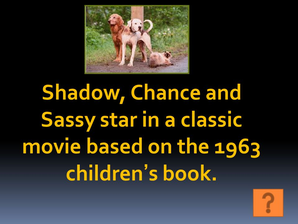 Shadow, Chance and Sassy star in a classic movie based on the 1963 children's book.
