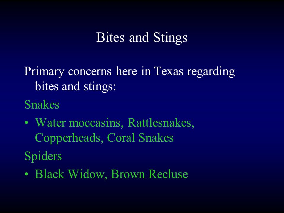 Bites and Stings Primary concerns here in Texas regarding bites and stings: Snakes Water moccasins, Rattlesnakes, Copperheads, Coral Snakes Spiders Black Widow, Brown Recluse