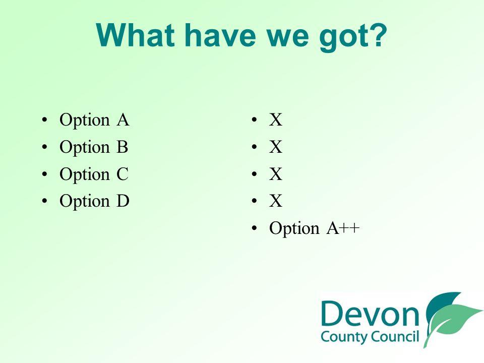 What have we got Option A Option B Option C Option D X X X X Option A++