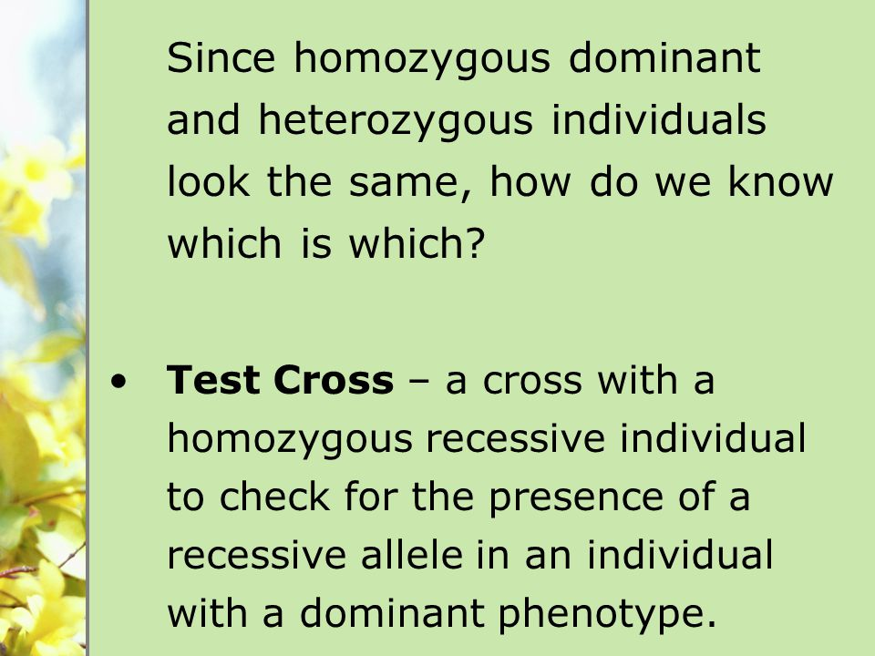 Since homozygous dominant and heterozygous individuals look the same, how do we know which is which.
