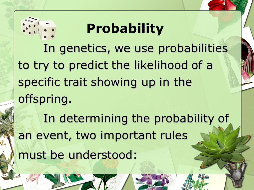 Probability In genetics, we use probabilities to try to predict the likelihood of a specific trait showing up in the offspring.