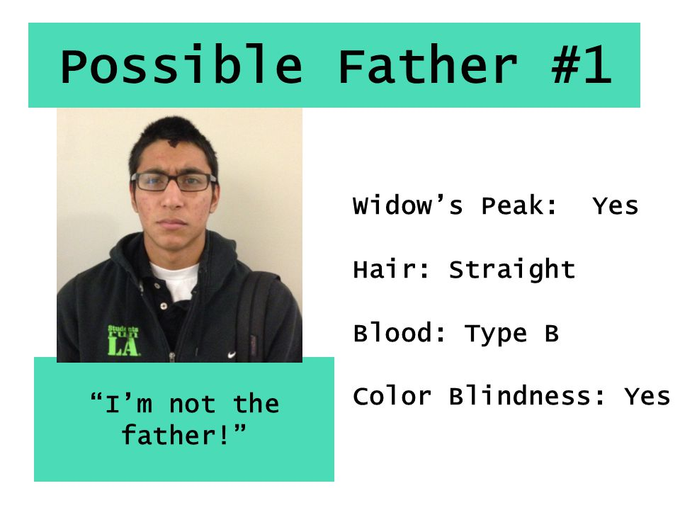 """Possible Father #1 """"I'm not the father!"""" Widow's Peak: Yes Hair: Straight Blood: Type B Color Blindness: Yes"""