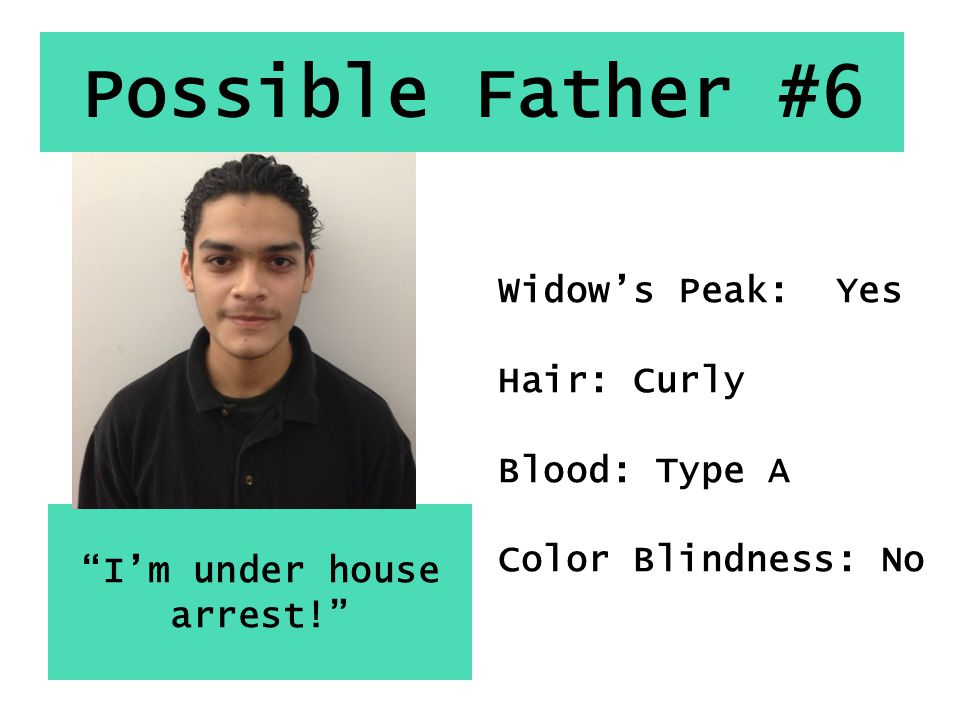 Possible Father #6 I'm under house arrest! Widow's Peak: Yes Hair: Curly Blood: Type A Color Blindness: No