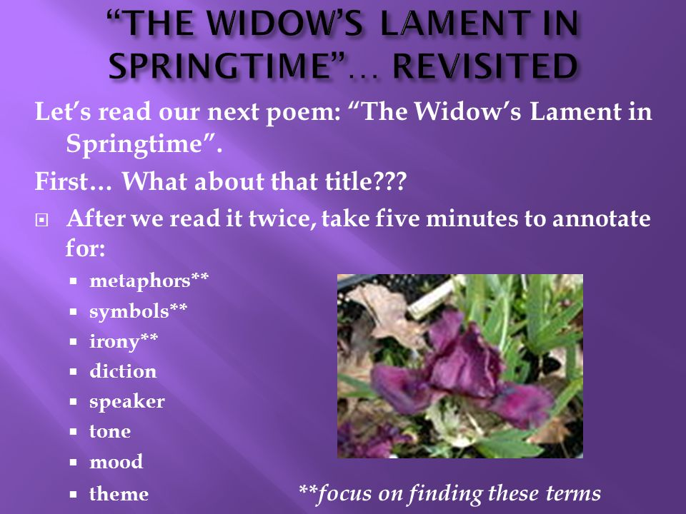Let's read our next poem: The Widow's Lament in Springtime .