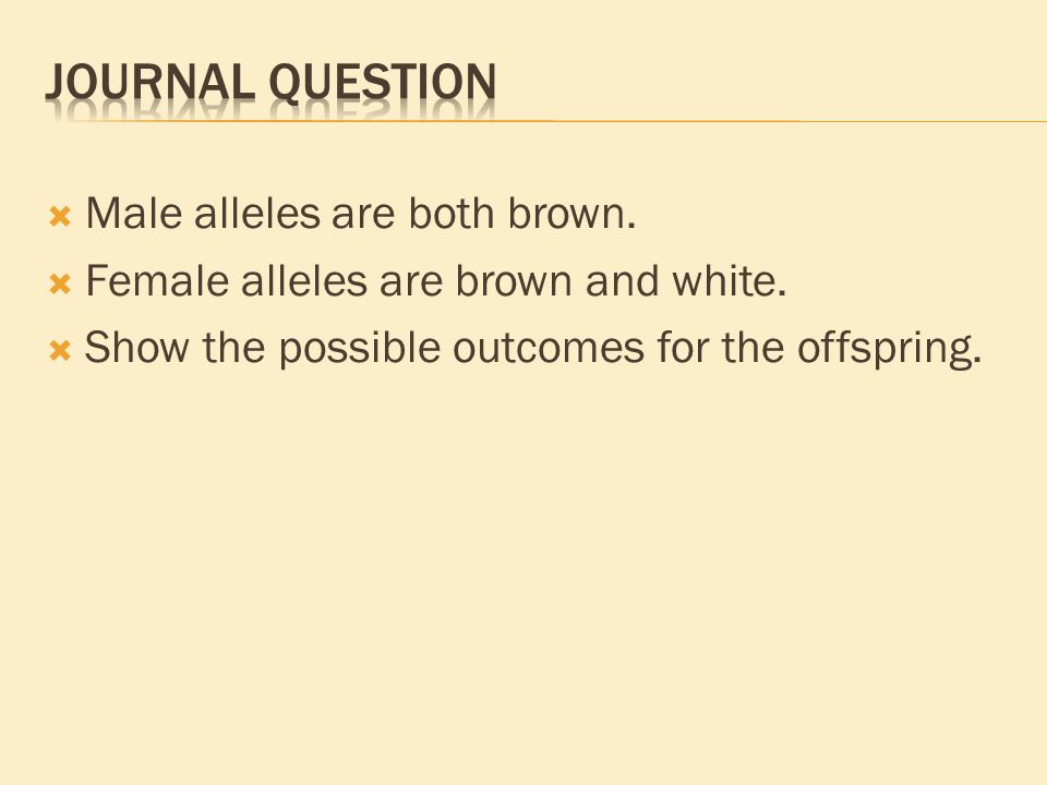 Freckles are dominant to no freckles.What is her PHENOTYPE.