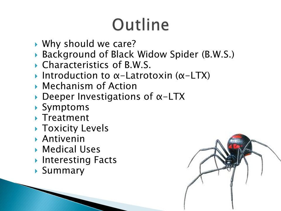  Why should we care?  Background of Black Widow Spider (B.W.S.)  Characteristics of B.W.S.  Introduction to α-Latrotoxin (α-LTX)  Mechanism of Ac