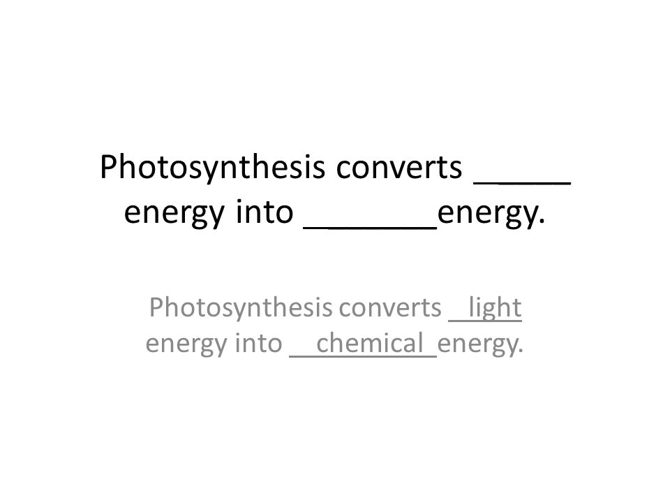Photosynthesis converts ____ energy into ______energy.
