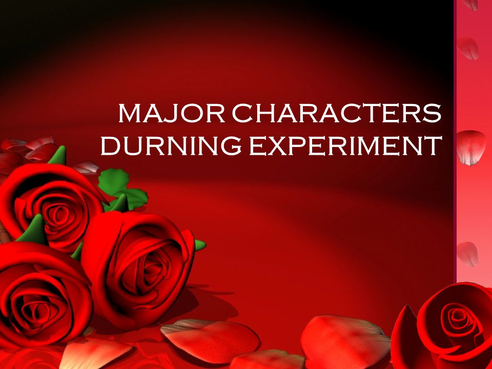 MAJOR CHARACTERS DURNING EXPERIMENT