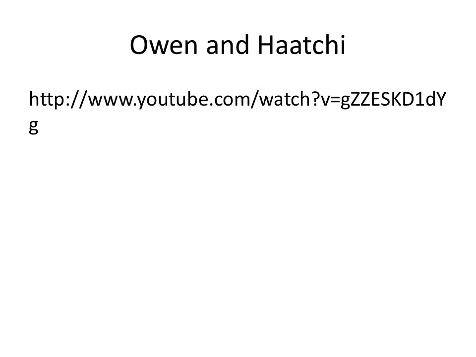 Owen and Haatchi http://www.youtube.com/watch?v=gZZESKD1dY g