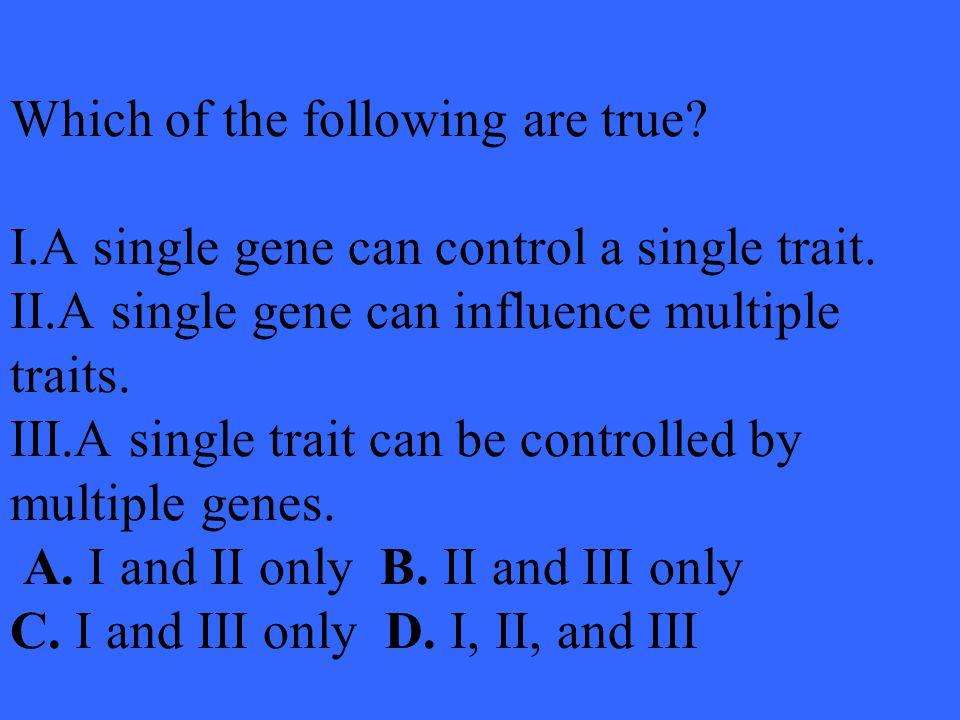B. chromosome