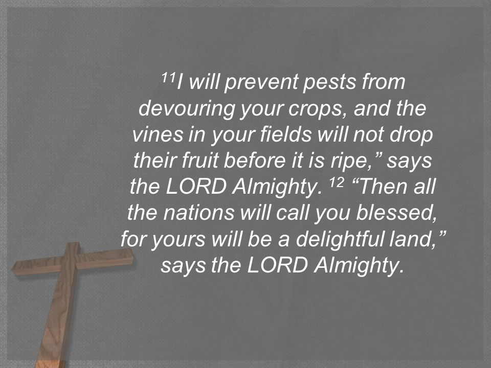 11 I will prevent pests from devouring your crops, and the vines in your fields will not drop their fruit before it is ripe, says the LORD Almighty.