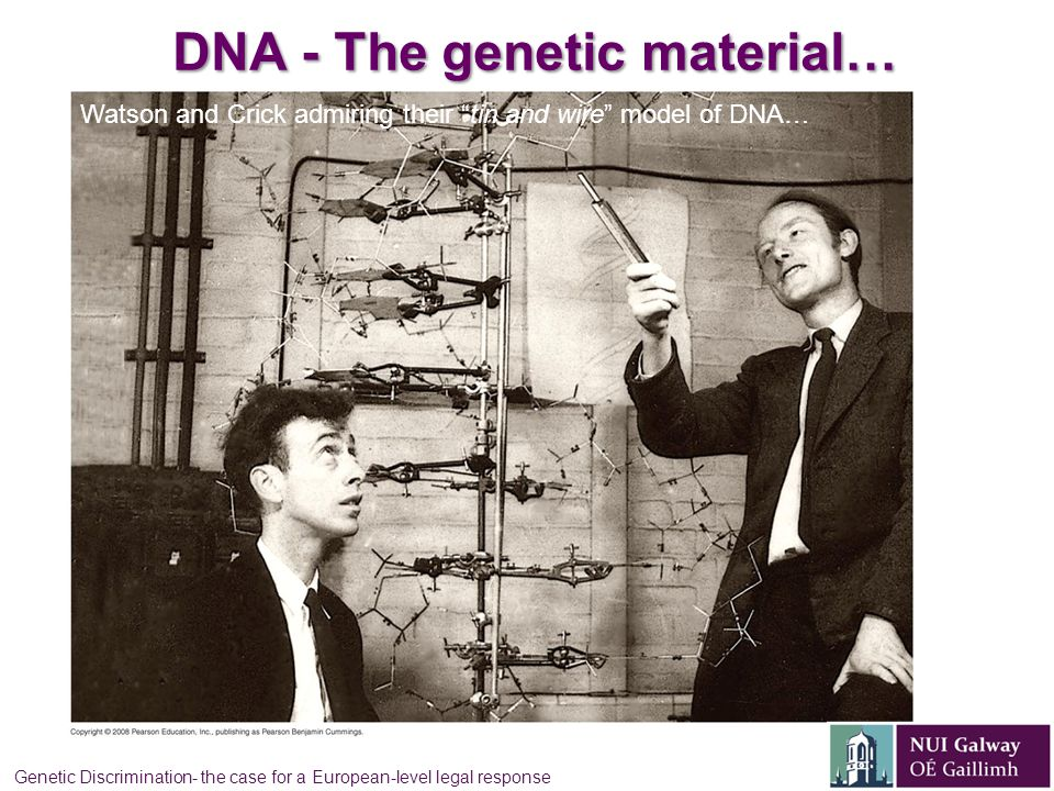DNA - The genetic material… Watson and Crick admiring their tin and wire model of DNA… Genetic Discrimination- the case for a European-level legal response