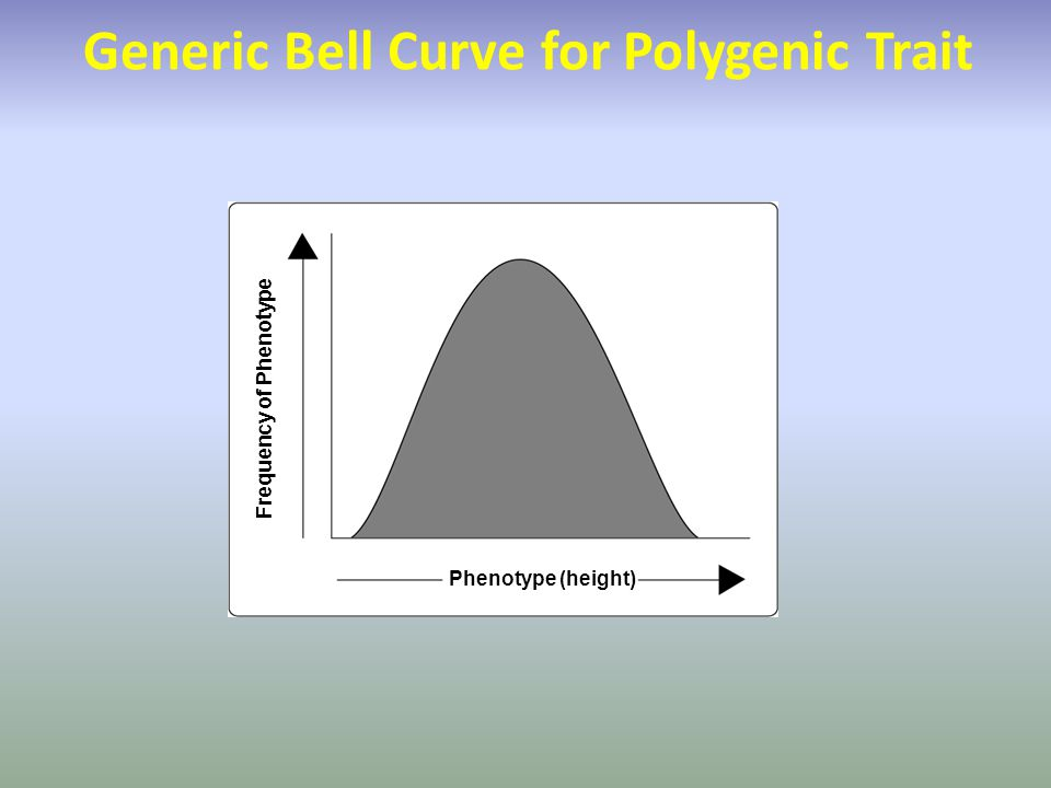 Frequency of Phenotype Phenotype (height) Generic Bell Curve for Polygenic Trait