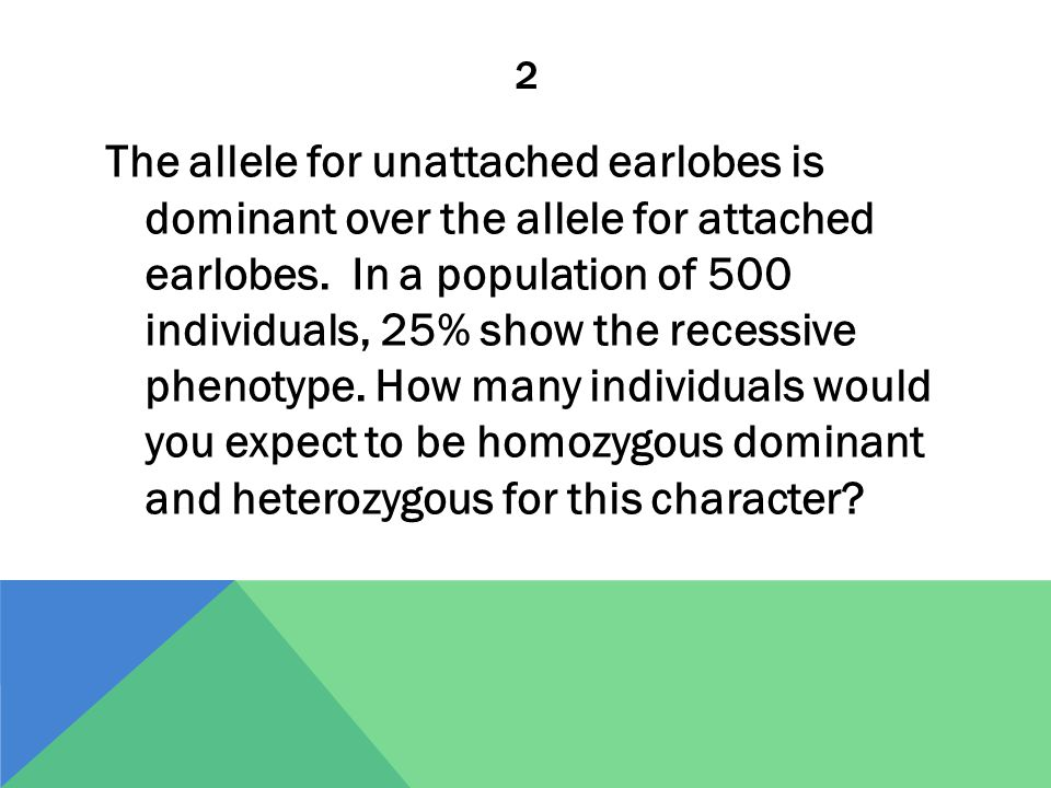 3 The allele for the hair pattern called widow's peak is dominant over the allele for no widow's peak. In a population of 1000 individuals, 510 show the dominant phenotype.