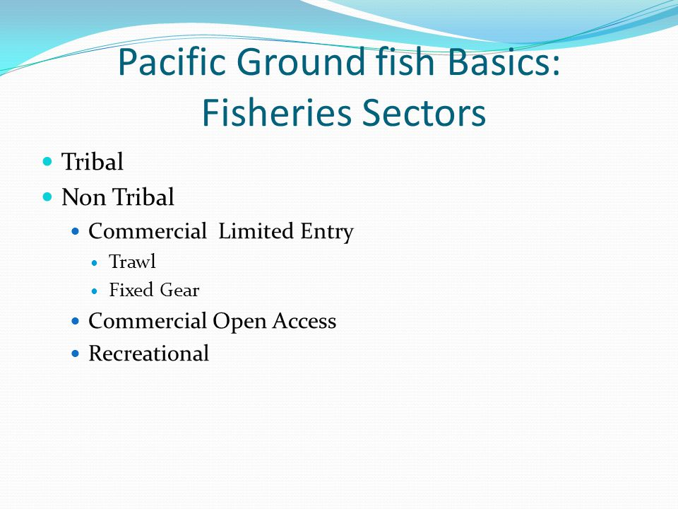 Pacific Ground fish Basics: Fisheries Sectors Tribal Non Tribal Commercial Limited Entry Trawl Fixed Gear Commercial Open Access Recreational