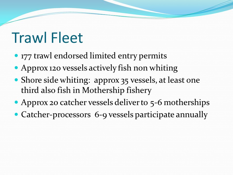 Trawl Fleet 177 trawl endorsed limited entry permits Approx 120 vessels actively fish non whiting Shore side whiting: approx 35 vessels, at least one third also fish in Mothership fishery Approx 20 catcher vessels deliver to 5-6 motherships Catcher-processors 6-9 vessels participate annually
