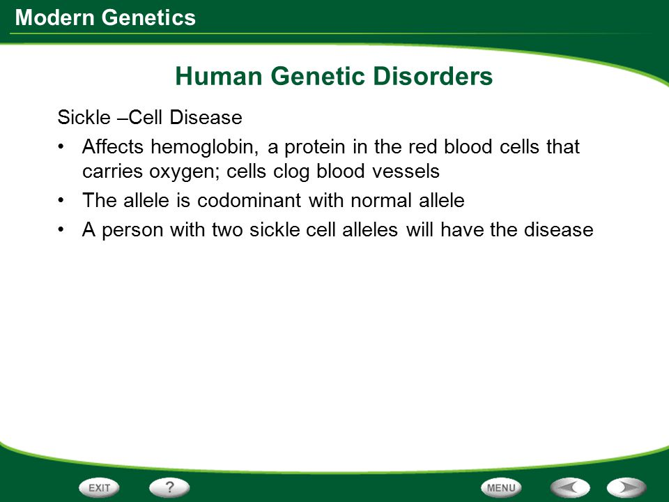 Modern Genetics Human Genetic Disorders Sickle –Cell Disease Affects hemoglobin, a protein in the red blood cells that carries oxygen; cells clog bloo