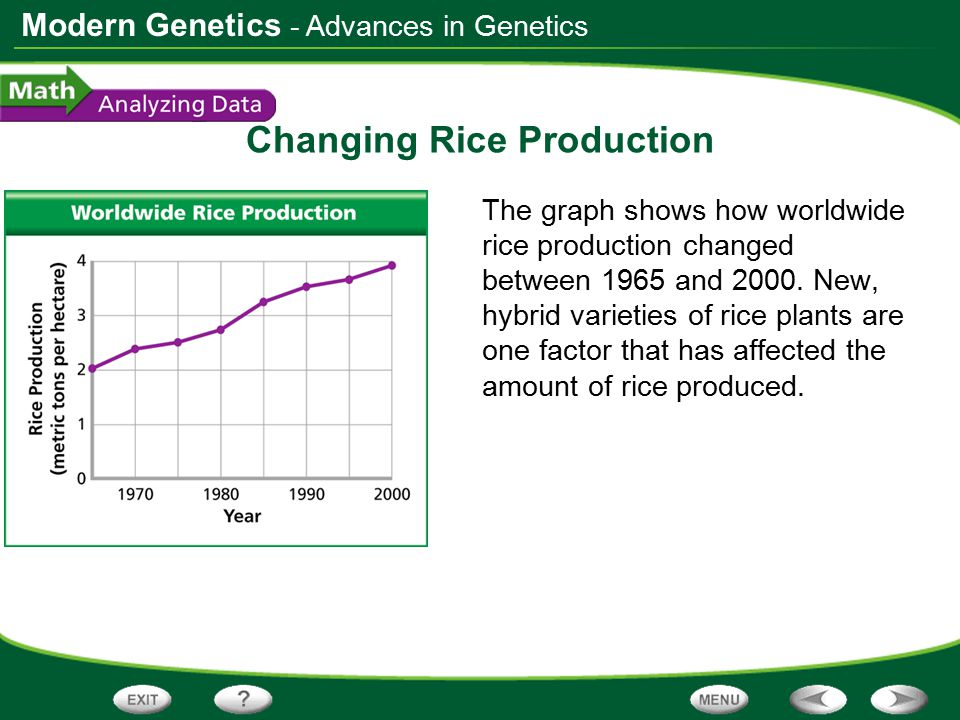 Modern Genetics Changing Rice Production The graph shows how worldwide rice production changed between 1965 and 2000. New, hybrid varieties of rice pl