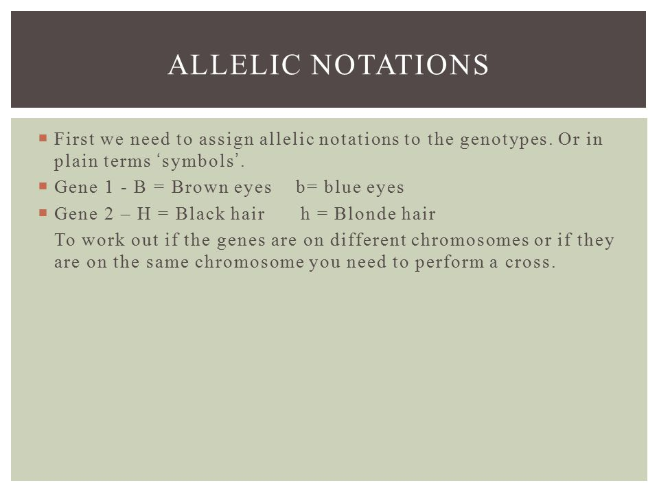 ALLELIC NOTATIONS  First we need to assign allelic notations to the genotypes.