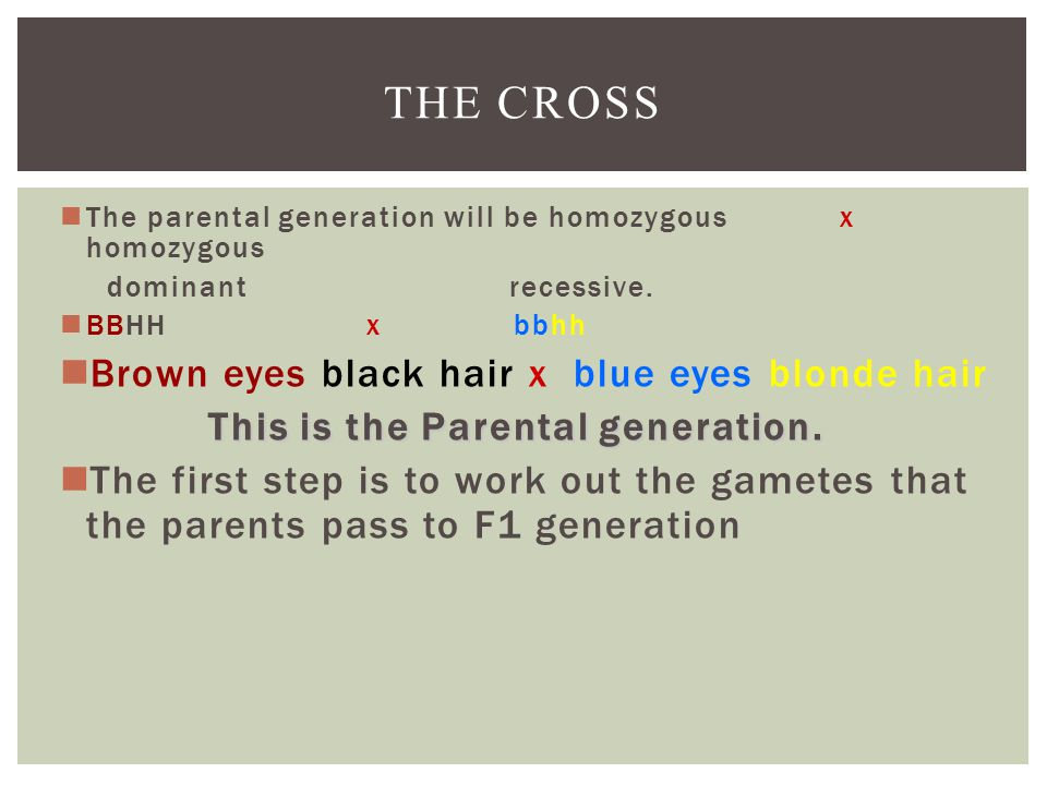 THE CROSS The parental generation will be homozygous x homozygous dominant recessive.