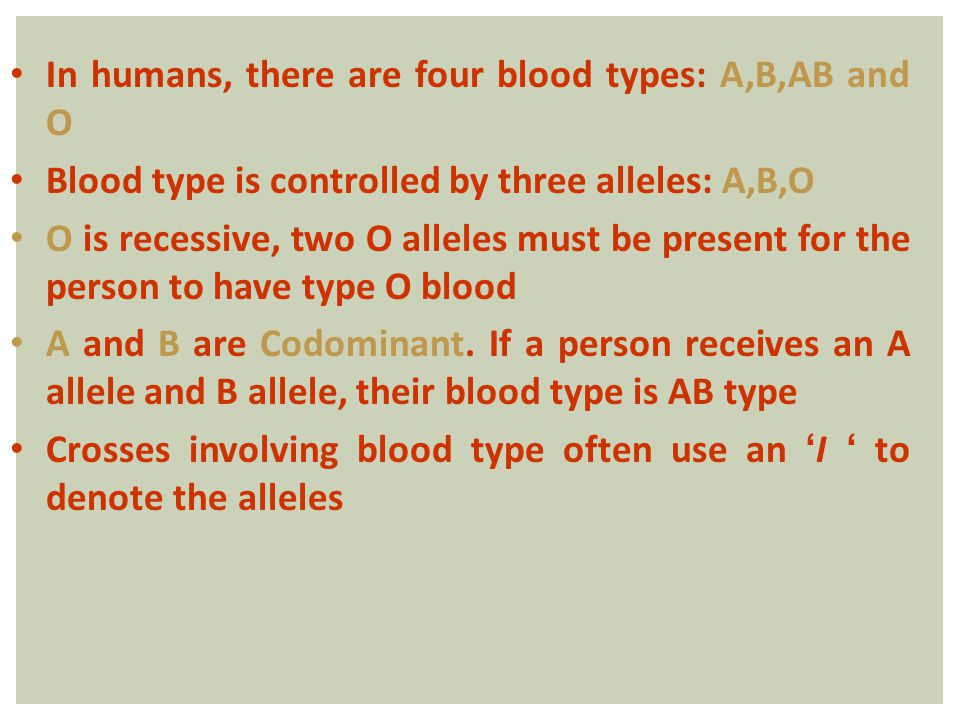 In humans, there are four blood types: A,B,AB and O Blood type is controlled by three alleles: A,B,O O is recessive, two O alleles must be present for the person to have type O blood A and B are Codominant.