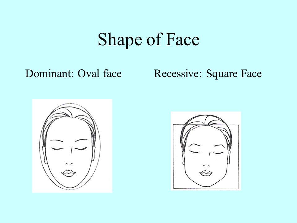 Cleft in Chin Dominant: no cleft Recessive: cleft present