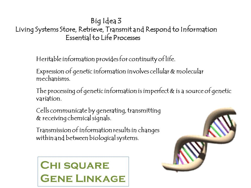 Big Idea 4 Biological Systems Interact and These Systems and Their Interactions Possess Complex Properties Interactions within biological systems lead to complex properties.